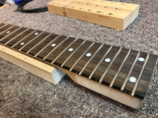 Fretted Finger Board