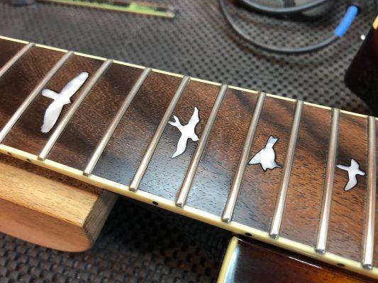 Oiled fingerboard