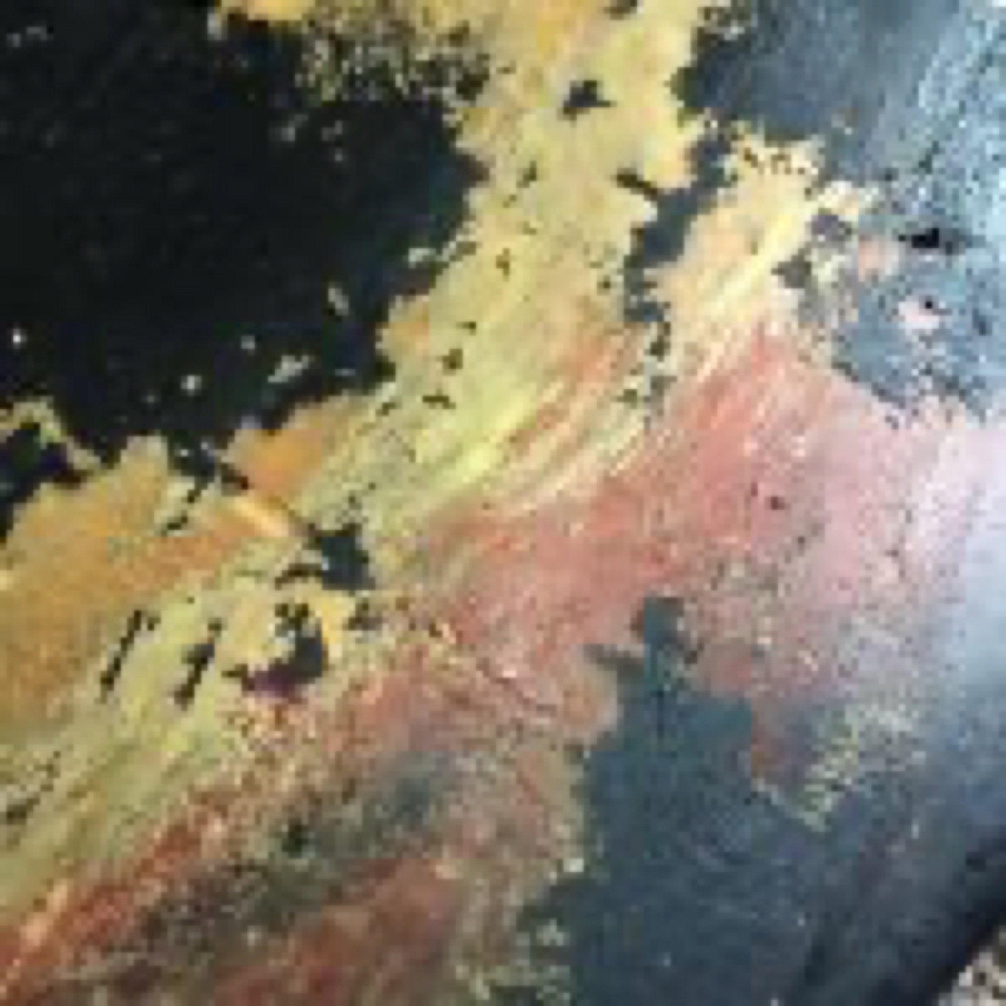 1971 Fender Mustang Bass Clean Up