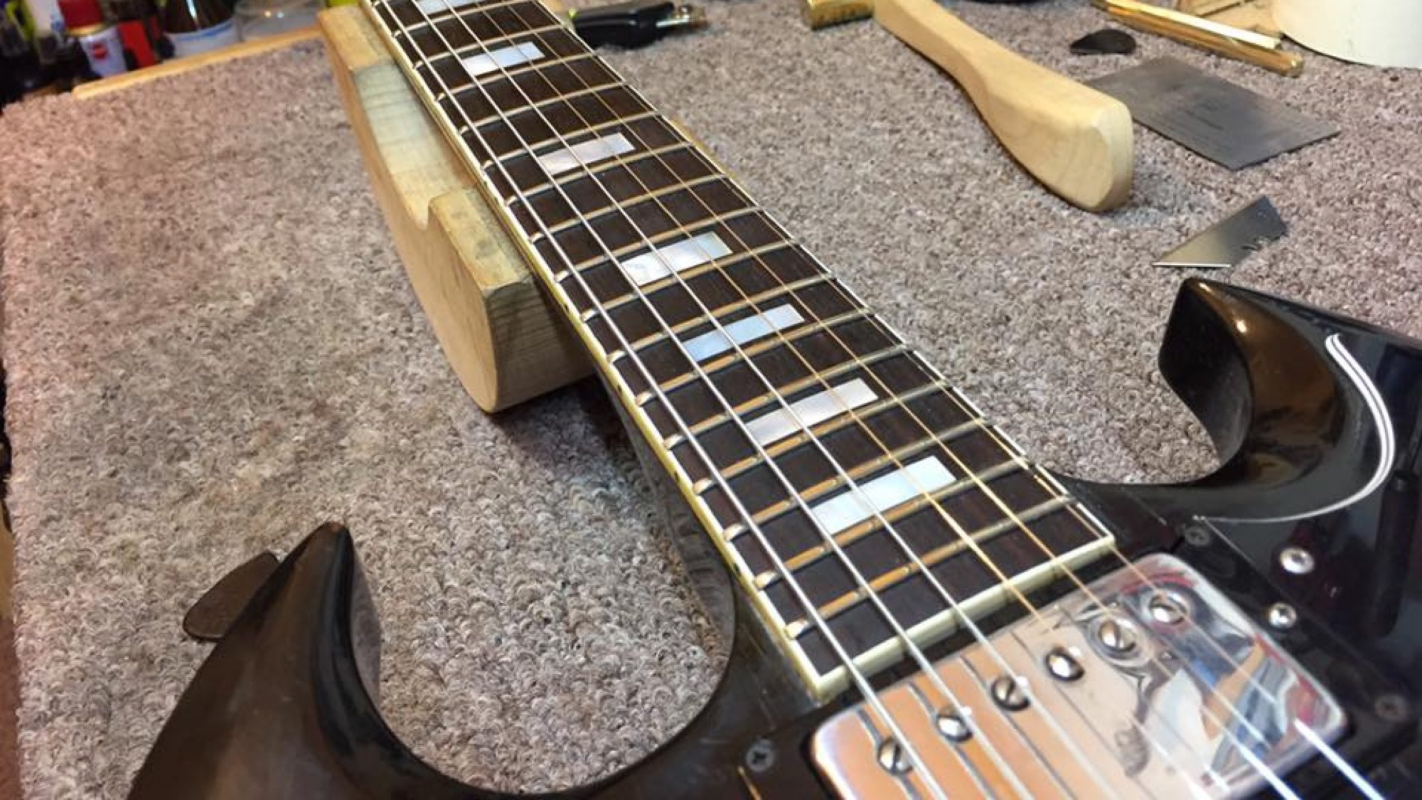 Ozzy Owl's Guitar Sanctuary
